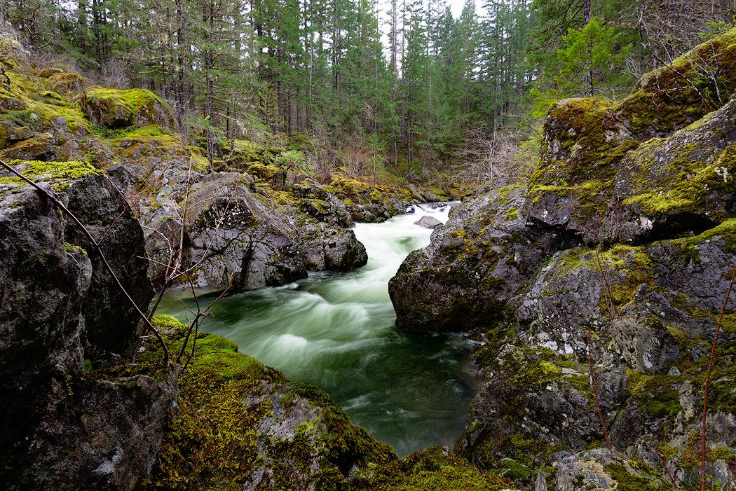 Koksilah River rapids