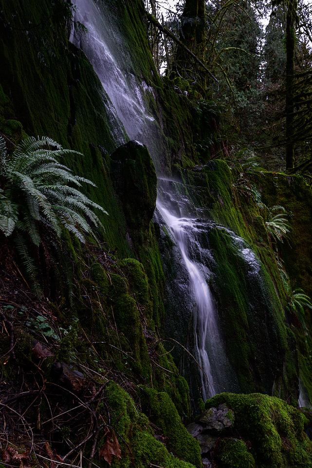 Goldstream Park Falls