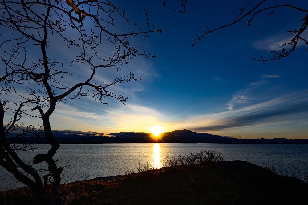 Biggs-Park-sunset-3